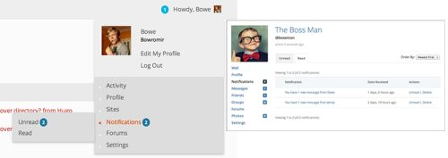 WordPress Gone Social – BuddyPress