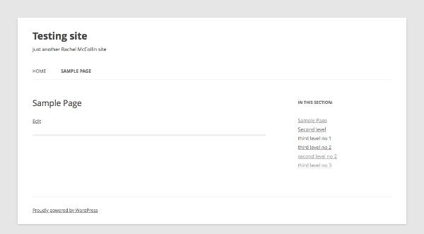 Displaying Your WordPress Widget on the Site