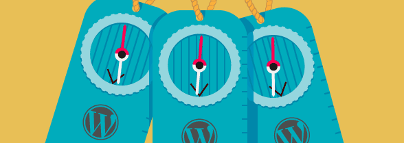 The Ultimate Guide to WordPress Multisite