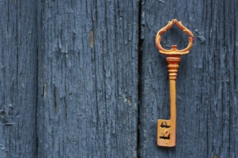 Reviewing the Simple Membership Plugin