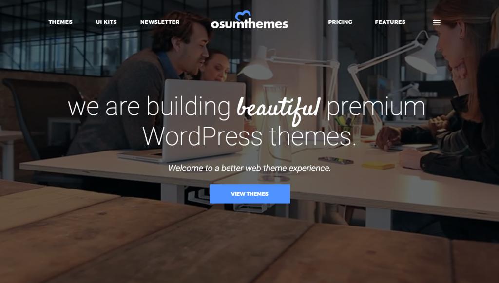 Osum Themes – Beautiful Premium WordPress Themes