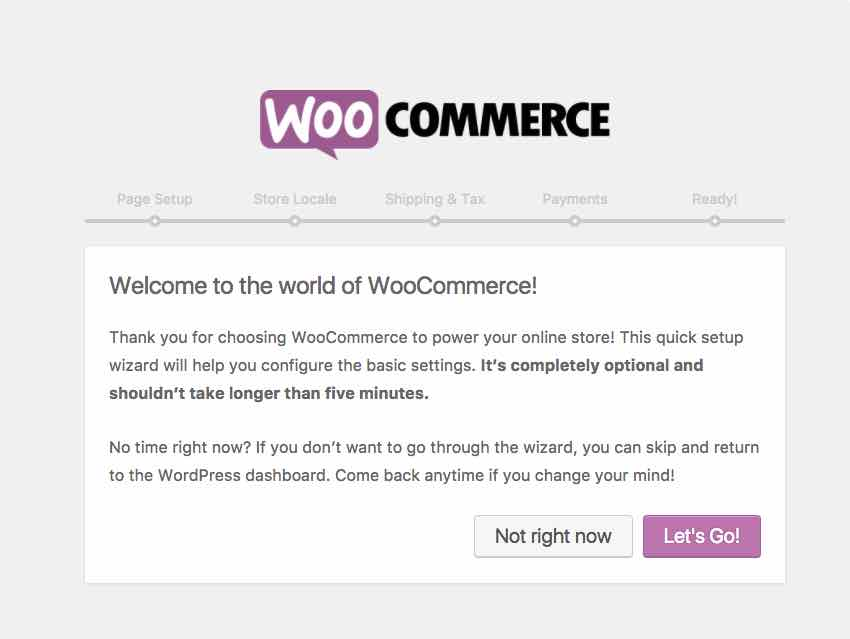 Adding Custom Fields to Simple Products With WooCommerce