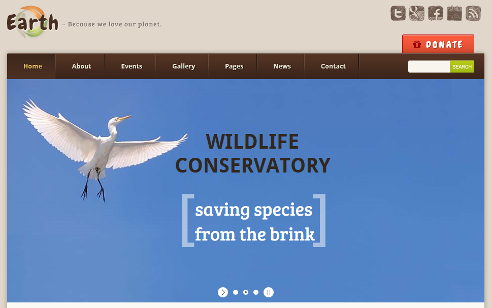 10 Best Eco-Conscious WordPress Themes for Your Business